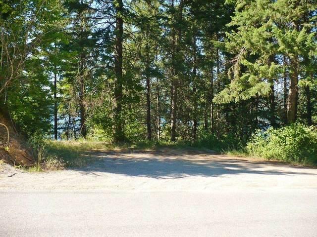 4109 Southwood Shored Rd Lots 23 & 24, Loon Lake, WA 99148 (#202119839) :: Trends Real Estate