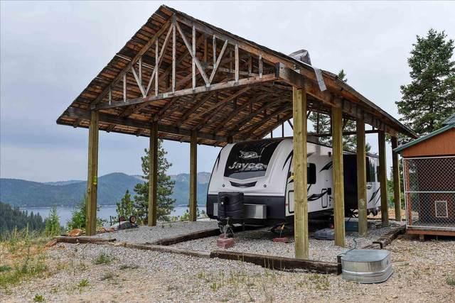 4100 N Deer Lake Lot 2 Rd, Loon Lake, WA 99148 (#202119841) :: Trends Real Estate