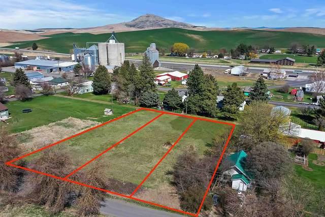 Parcel 142200013240000, Steptoe, WA 99174 (#202119888) :: Freedom Real Estate Group