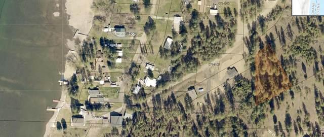 XXX Palmer Ln, Nine Mile Falls, WA 99026 (#202119923) :: The Synergy Group
