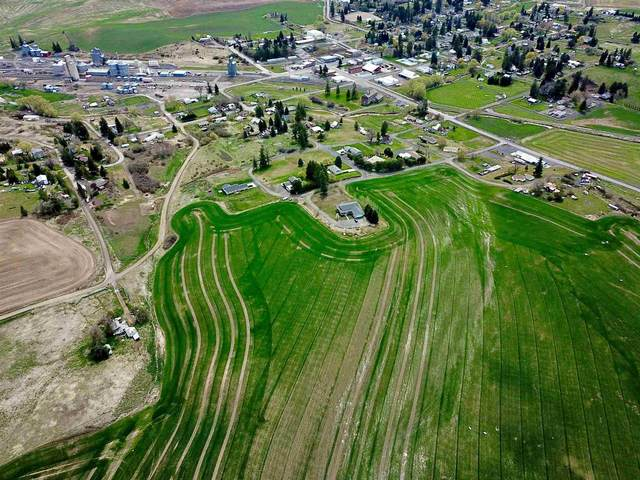 NKA Henry St, Oakesdale, WA 99158 (#202119925) :: Prime Real Estate Group