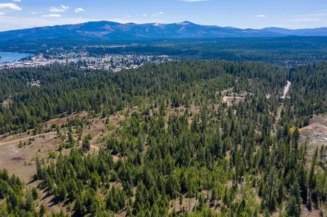 200 Happy Trails Ln, Newport, WA 99156 (#202119936) :: Prime Real Estate Group