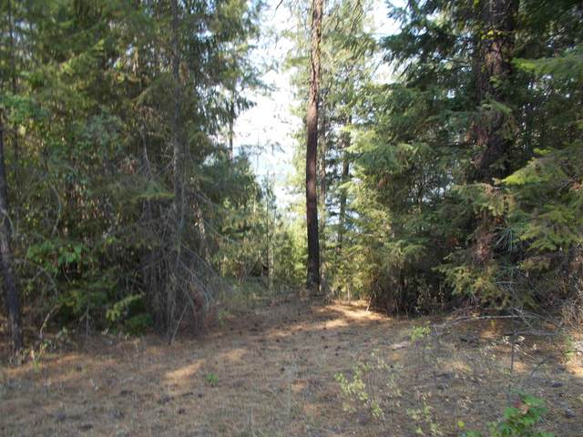 TBD N Hwy 25, Evans, WA 99126 (#202119941) :: The Synergy Group