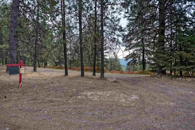 12615 S Alpine Fern Ln, Rockford, WA 99030 (#202119996) :: The Spokane Home Guy Group