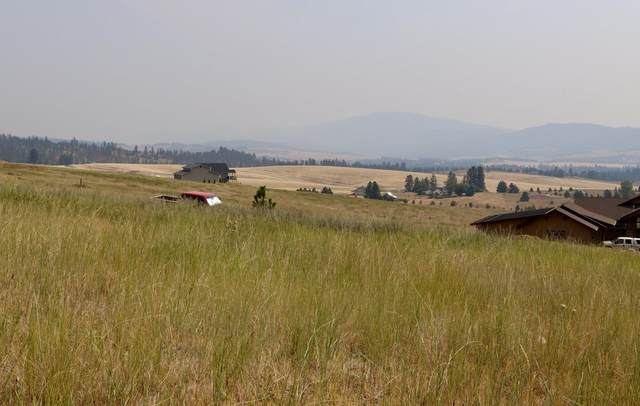 10310 S Valaneov Ln, Spokane, WA 99223 (#202120019) :: Cudo Home Group