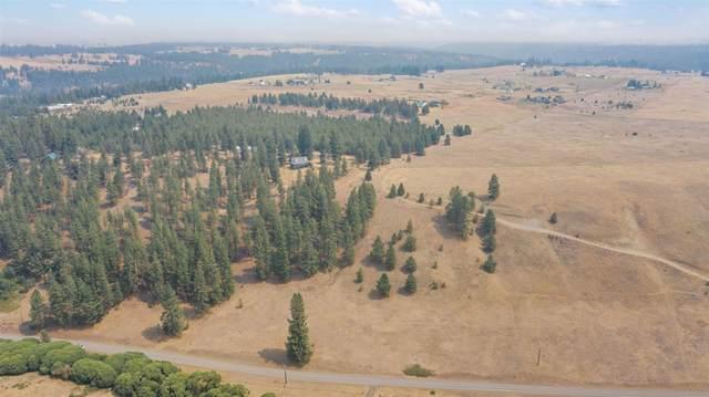 XX N Deep Creek Rd, Medical Lake, WA 99022 (#202120239) :: Real Estate Done Right