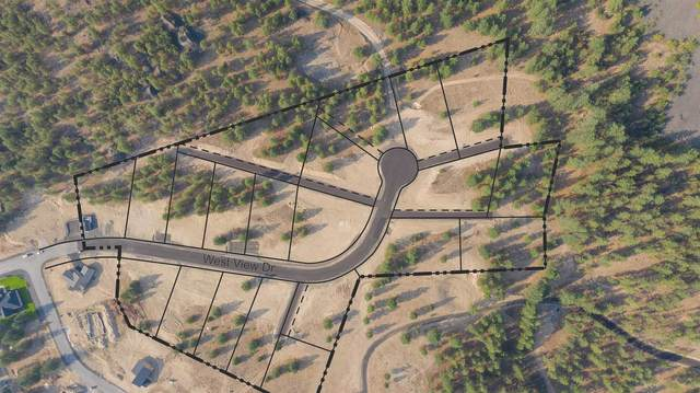 Lot 41 Westview Dr, Nine Mile Falls, WA 99026 (#202120745) :: Elizabeth Boykin | Keller Williams Spokane