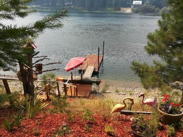 102 River Rd S Rd, Cusick, WA 99119 (#202120999) :: Bernadette Pillar Real Estate
