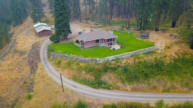 3 Giddings Dr, Kettle Falls, WA 99141 (#202121065) :: Top Agent Team
