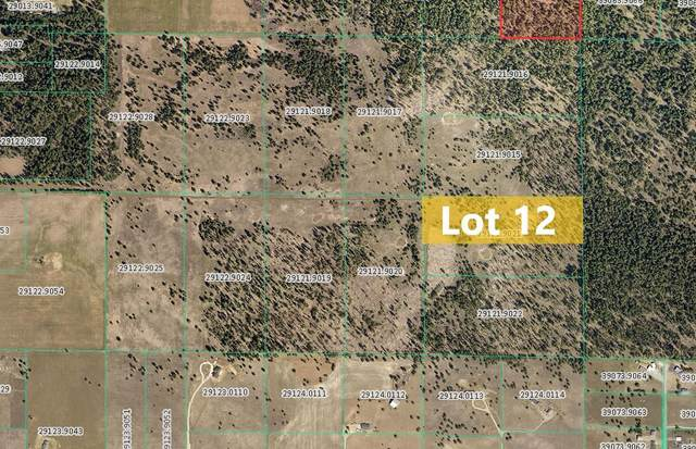Sherman Rd -TBD Unassigned Address Rd Lot 12, Deer Park, WA 99006 (#202121412) :: The Synergy Group