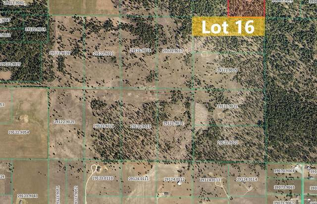 Sherman Rd -TBD Unassigned Address Rd Lot 16, Deer Park, WA 99006 (#202121416) :: The Synergy Group