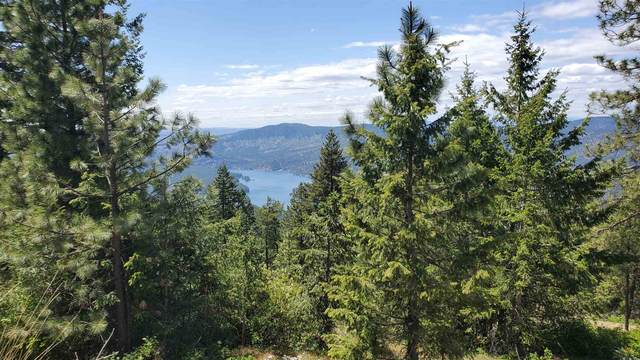 XX Blueridge Way Lot #33, Nine Mile Falls, WA 99006 (#202121461) :: Freedom Real Estate Group