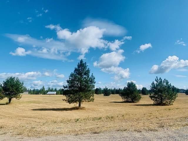 2006 W Maverick Ln, Deer Park, WA 99006 (#202121499) :: The Synergy Group