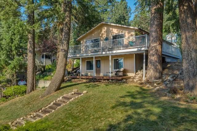 12904 N North Park St, Newman Lake, WA 99025 (#202121518) :: Freedom Real Estate Group