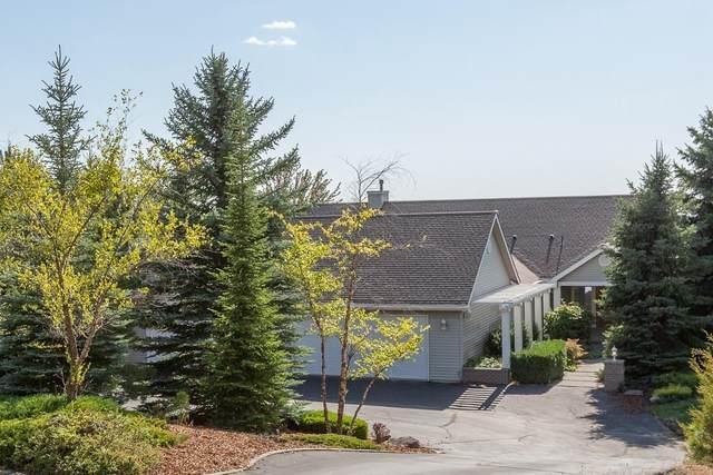 6230 E Custer Ln, Spokane, WA 99223 (#202121549) :: The Spokane Home Guy Group
