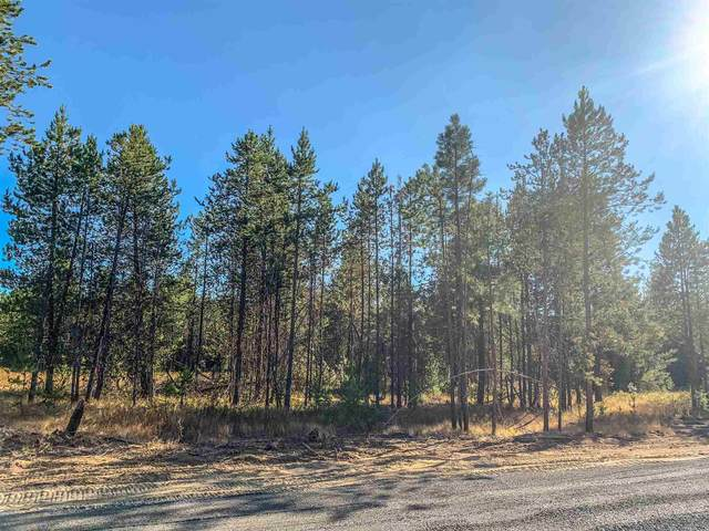 NNA W Montgomery Rd Lot C, Deer Park, WA 99006 (#202121565) :: The Synergy Group