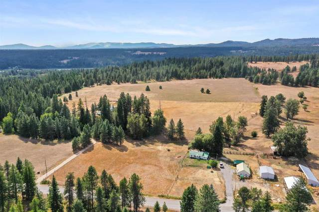 125 Regal Rd, Elk, WA 99009 (#202121824) :: The Synergy Group