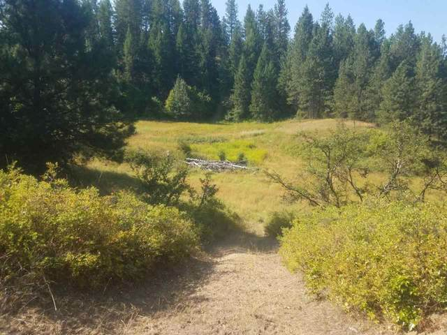 XXXX College Ln, Kettle Falls, WA 99141 (#202121831) :: The Hardie Group