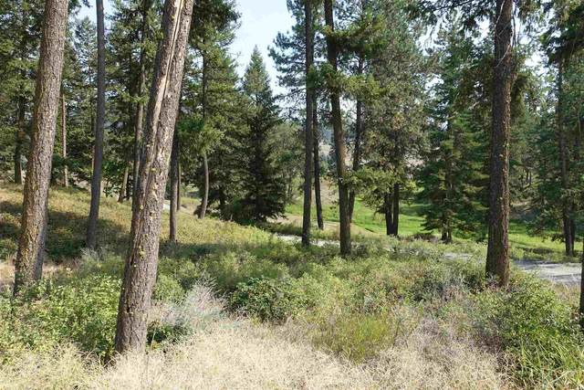 895 Evergreen Way, Colville, WA 99114 (#202121860) :: Freedom Real Estate Group