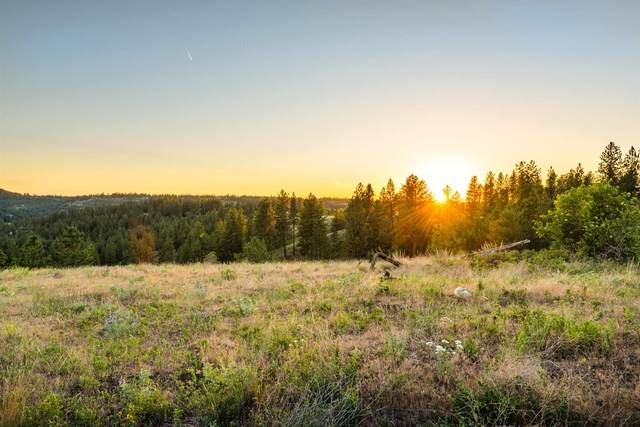 0 S Valley Chapel Rd, Valleyford, WA 99036 (#202122010) :: The Spokane Home Guy Group