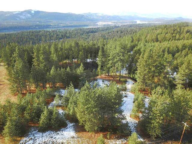 000 Indian Creek Rd Lot 1, Newport, WA 99156 (#202122076) :: The Synergy Group