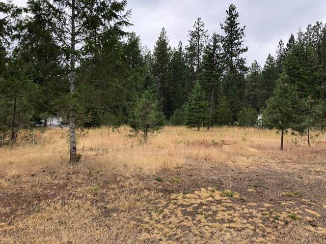 107 W Trappers Loop, Chewelah, WA 99109 (#202122130) :: The Synergy Group
