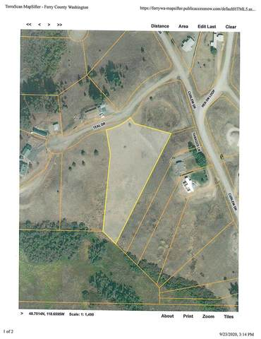 NNA Teal Dr Lot 26, Republic, WA 99166 (#202122135) :: Trends Real Estate