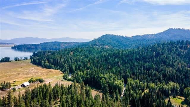 20414 E Mt View Rd, Newman Lake, WA 99025 (#202122165) :: Prime Real Estate Group