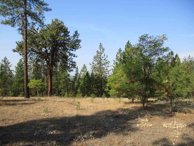Pine Hill Ct, Nine Mile Falls, WA 99026 (#202122248) :: Trends Real Estate