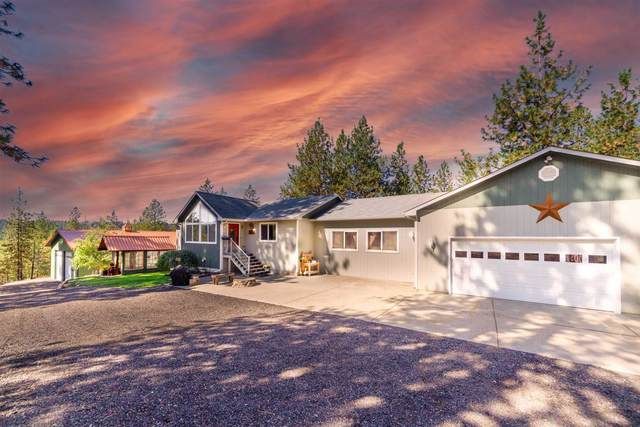 19919 N Day Mt Spokane Rd, Mead, WA 99021 (#202122377) :: Real Estate Done Right