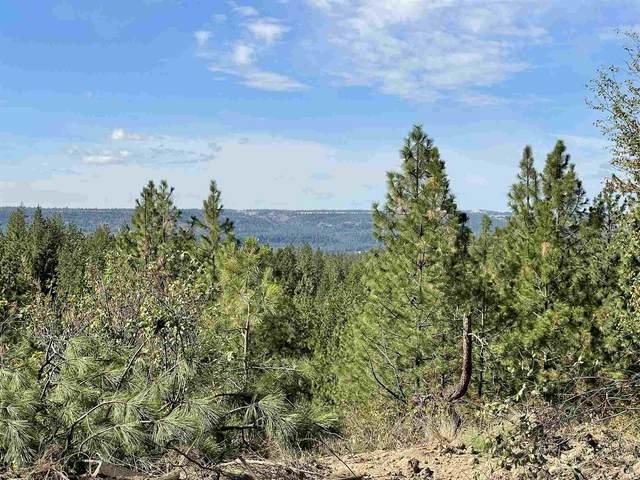 5766 Weaver Way, Deer Park, WA 99006 (#202122632) :: Trends Real Estate