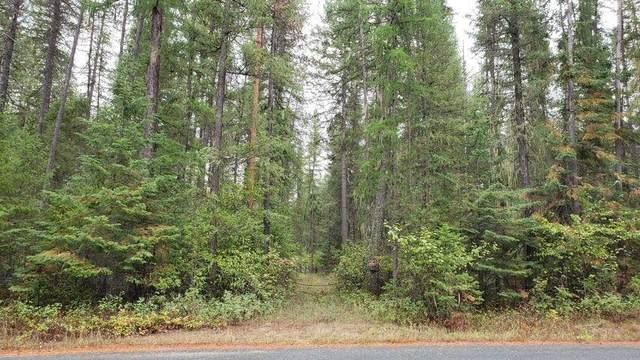 101 Arthurs Blvd/Pines Ln, Cusick, WA 99119 (#202122668) :: Freedom Real Estate Group