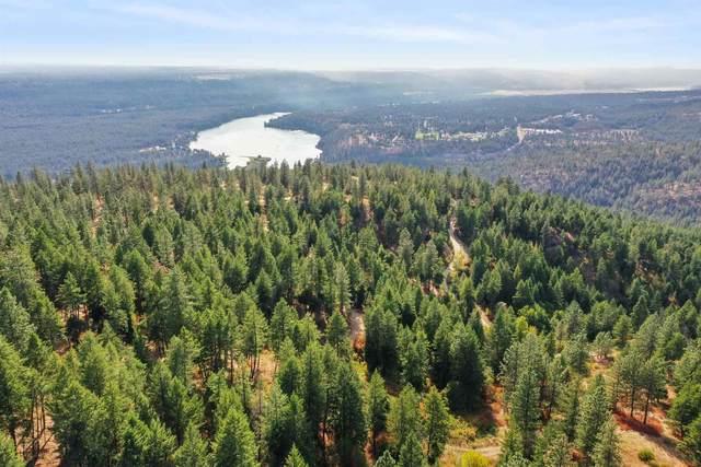 16518 N Abigail Ln, Spokane, WA 99208 (#202122838) :: Five Star Real Estate Group