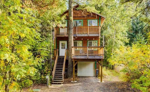221 Woodard Rd, Newport, WA 99156 (#202122867) :: Bernadette Pillar Real Estate