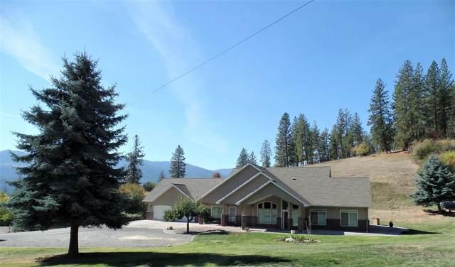 146 C Buena Vista Dr, Colville, WA 99114 (#202123004) :: Bernadette Pillar Real Estate