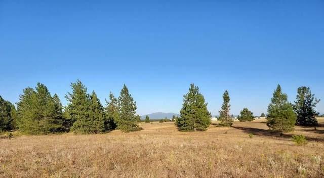 361XX N Cedar Rd, Deer Park, WA 99006 (#202123008) :: Bernadette Pillar Real Estate