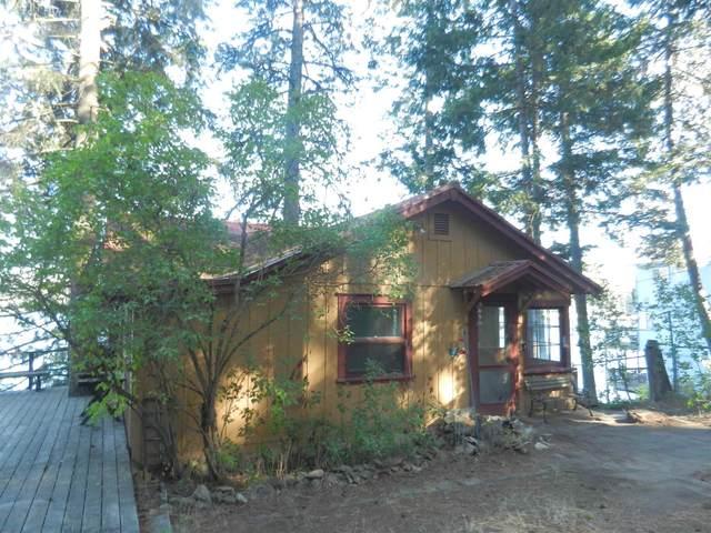 45466 Lakeshore  Homes Rd, Loon Lake, WA 99148 (#202123028) :: The Spokane Home Guy Group