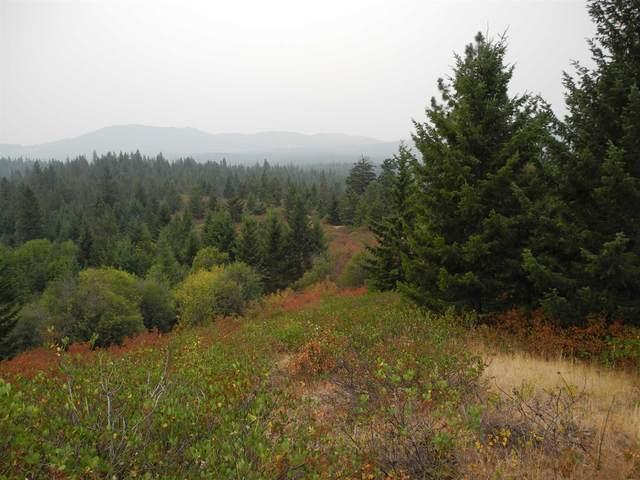 NKA Hill Top Rd. Rd, Newport, WA 99156 (#202123073) :: The Spokane Home Guy Group