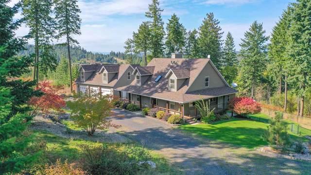 19321 N Day Mt Spokane Rd, Mead, WA 99021 (#202123109) :: Freedom Real Estate Group