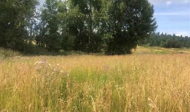 xx Gardenspot Rd, Clayton, WA 99110 (#202123232) :: The Spokane Home Guy Group