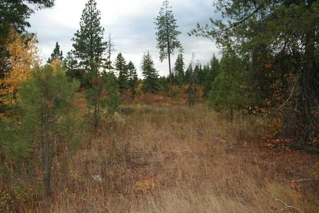 000 Little Sweden Rd Lot 2, Valley, WA 99181 (#202123304) :: The Spokane Home Guy Group