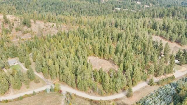 TBD E Hauser Lake Branch Rd, Newman Lake, WA 99025 (#202123413) :: Trends Real Estate