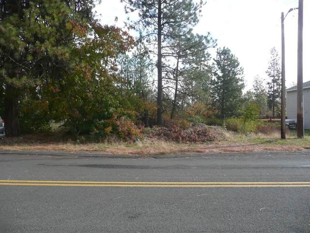 13800 Blk S Clear Lake Rd, Medical Lake, WA 99022 (#202123464) :: Trends Real Estate
