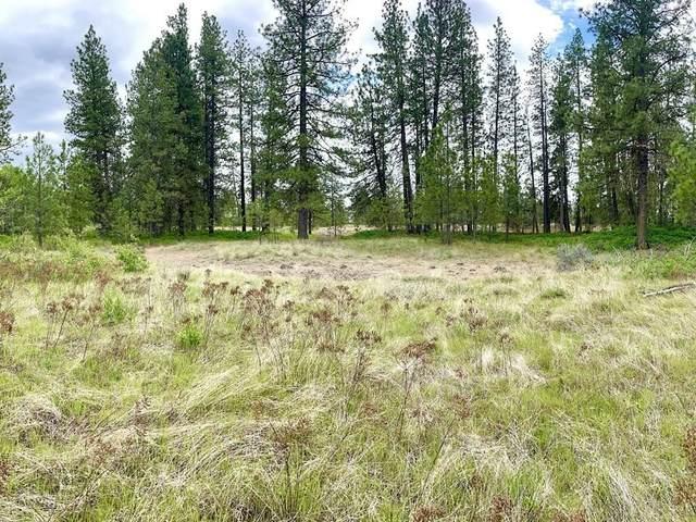22427 W Valeri Ln, Spokane, WA 99224 (#202123677) :: Real Estate Done Right