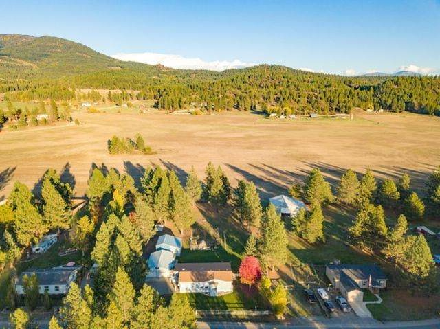 394 Dominion View Rd, Colville, WA 99114 (#202123837) :: RMG Real Estate Network