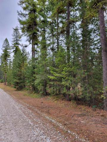 XXX Oregon Way, Clayton, WA 99110 (#202124007) :: Elizabeth Boykin | Keller Williams Spokane