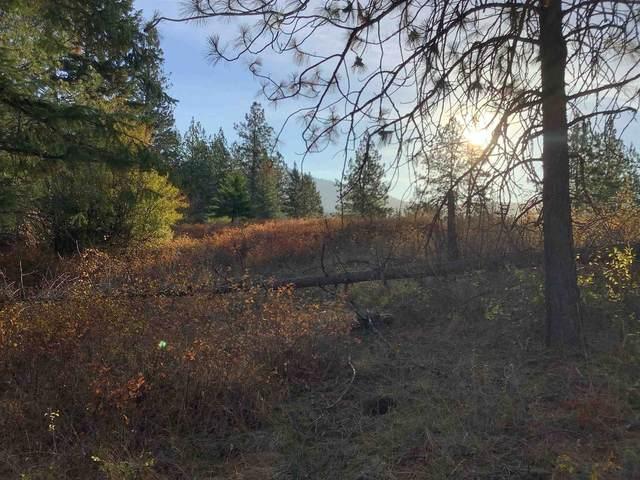 289XX N Conklin Rd, Chattaroy, WA 99003 (#202124008) :: The Spokane Home Guy Group