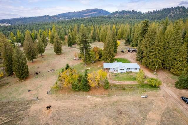 1081 Willms Rd, Elk, WA 99009 (#202124010) :: Five Star Real Estate Group