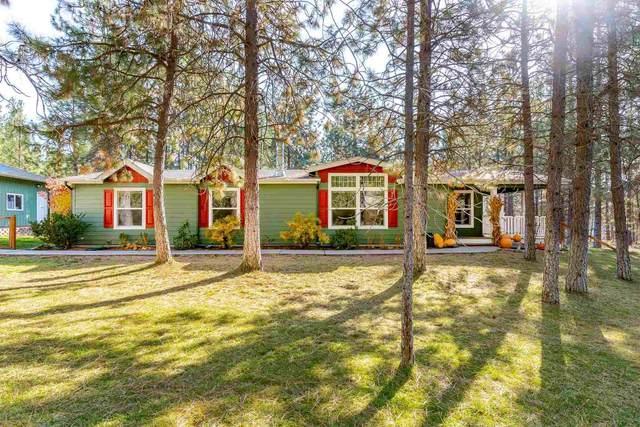6263 Stoney Peak Way, Nine Mile Falls, WA 99006 (#202124103) :: Trends Real Estate