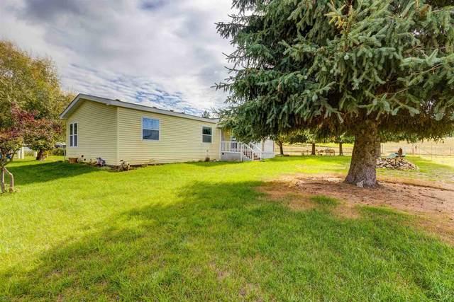 10110 N Mccoy Rd, Newman Lake, WA 99025 (#202124205) :: Trends Real Estate